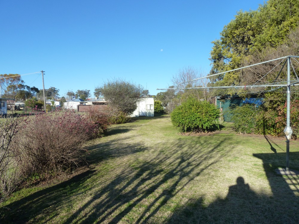 Werris Creek real estate For Rent