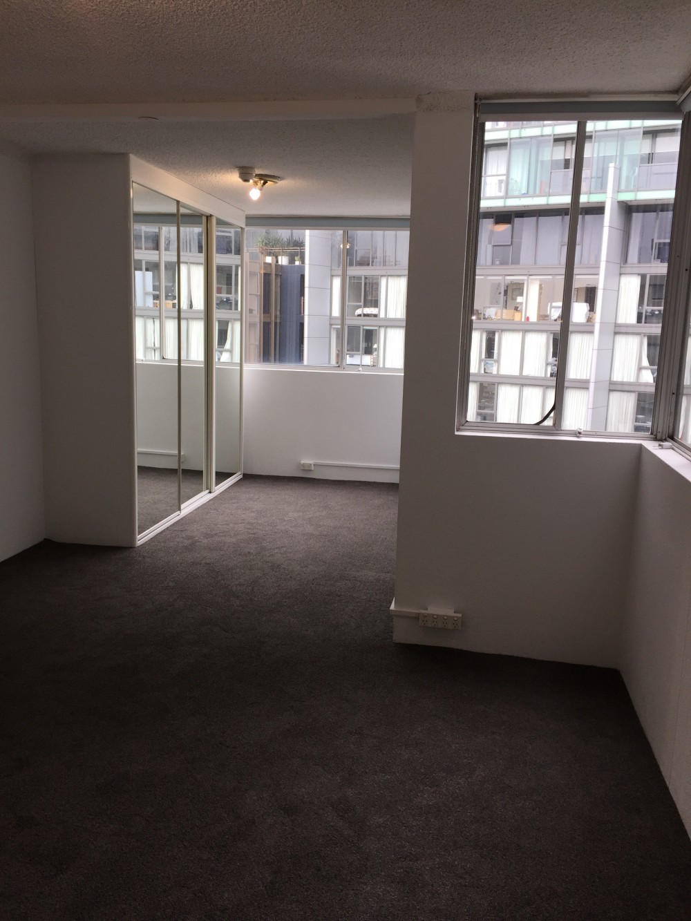 Surry Hills real estate For Rent
