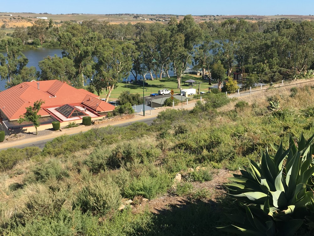 Open for inspection in Mannum