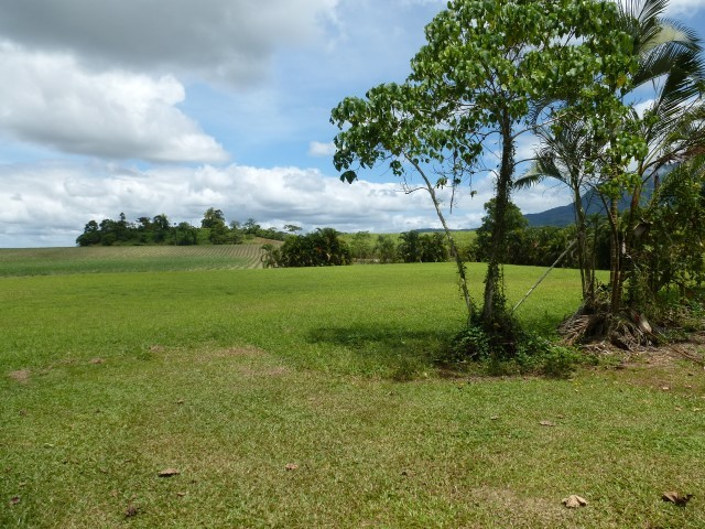 Babinda Properties Sold