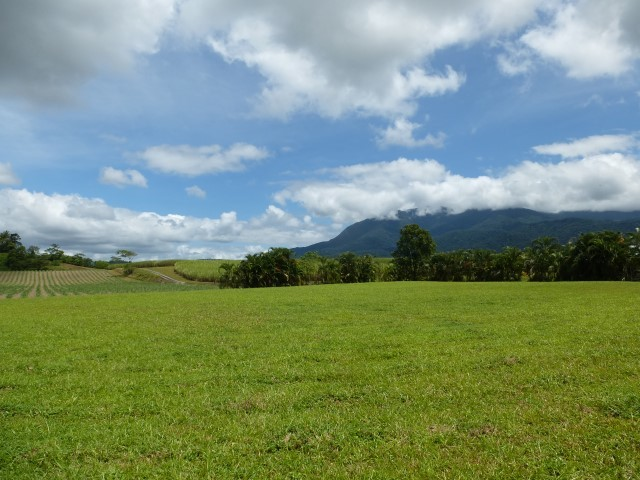 Babinda real estate Sold