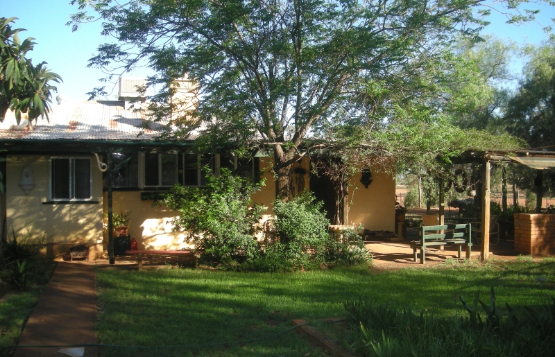 Real Estate in Nyngan