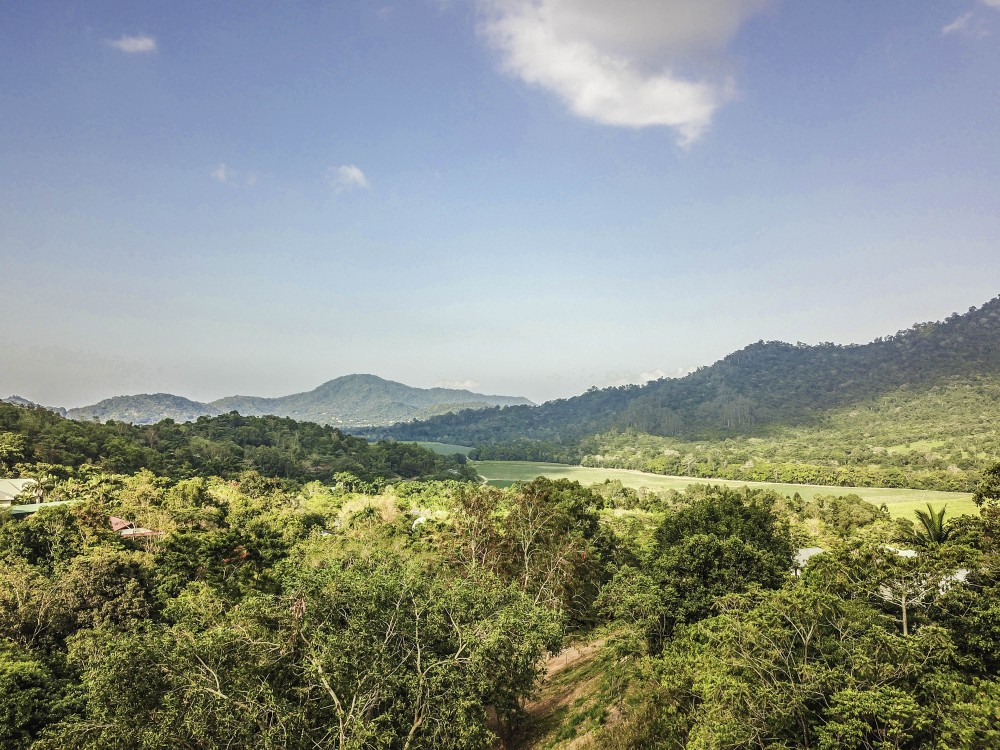Property For Sale in Redlynch