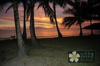 Oak beach.  Tropical!