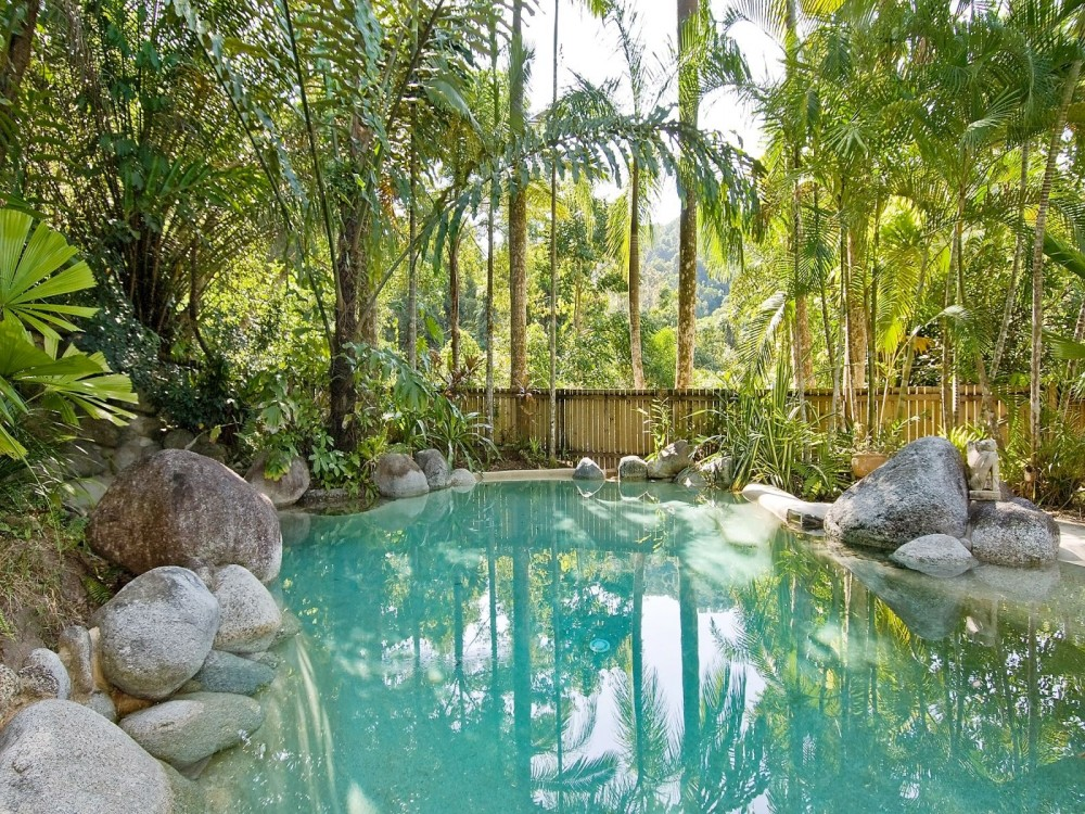 Rainforest surrounded swimming pool