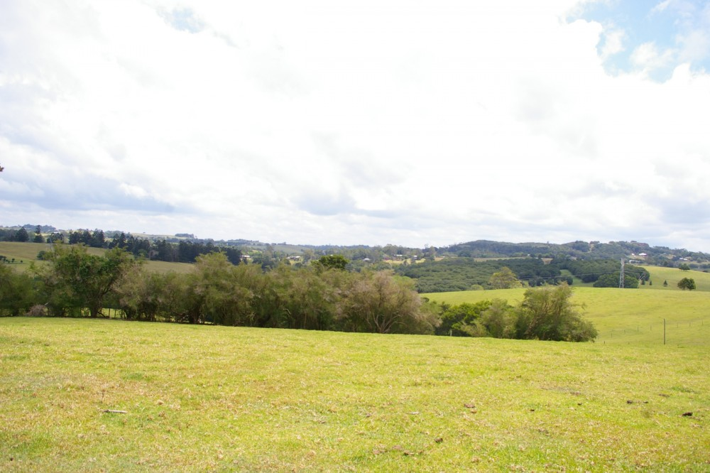 Maleny real estate For Rent