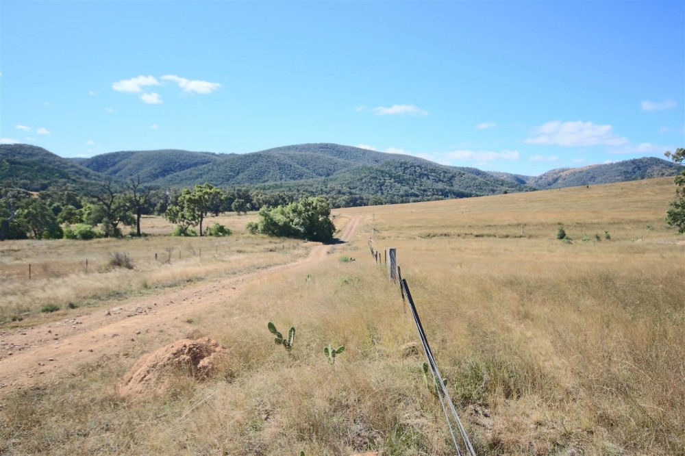 Tenterfield Properties For Sale
