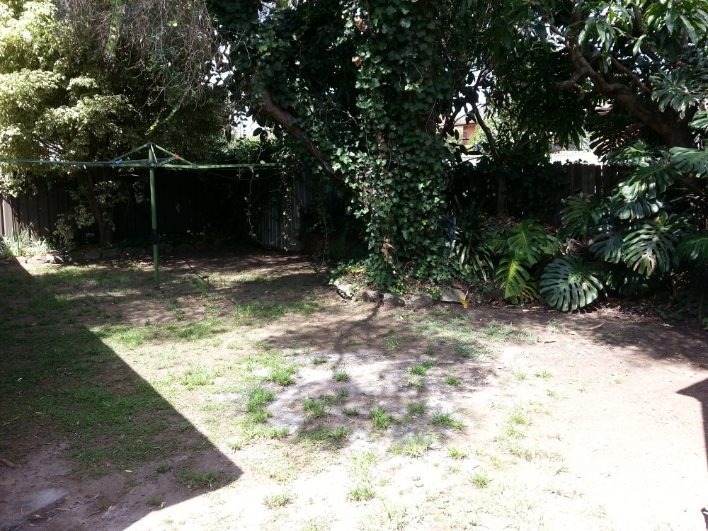 Real Estate in North Ryde