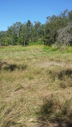 Lot 7 / 621 Devereux Creek Road, Devereux Creek, QLD 4753