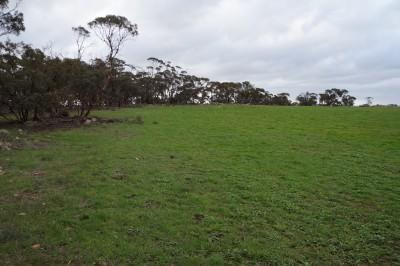 Property in Monarto - $169,000