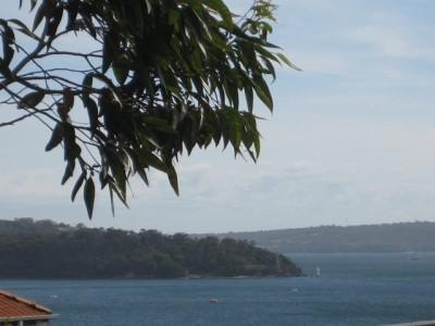 Property in Elizabeth Bay - Sold