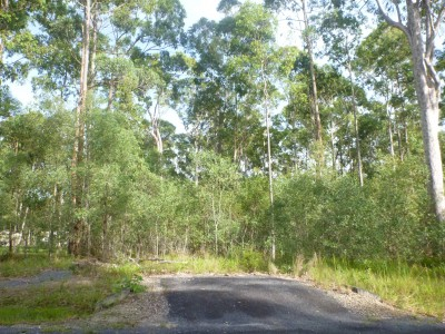Property in Woombah - $170,000