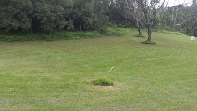 Property in Eungella - Offers from $80,000