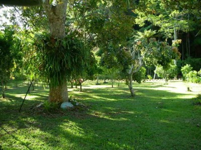 Property in Eungella - Sold