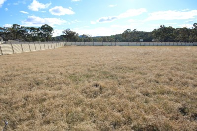 Property in Tenterfield - $49,000.00