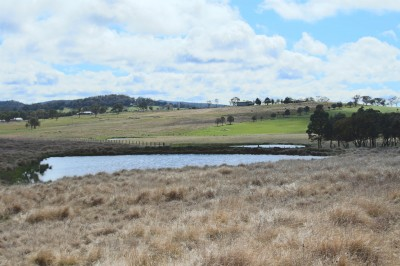 Property in Tenterfield - $180,000