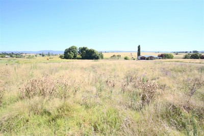 Property in Tenterfield - $80,000.00