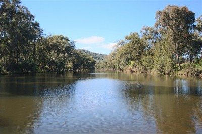 Property in Tenterfield - $190,000