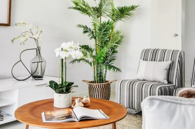 Property in Manly West - By Negotiation