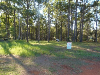 Property in Glenwood - $115,000 neg
