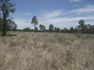 Property in Kitoba - $125,000
