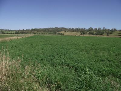Property in Goomeri - $850,000