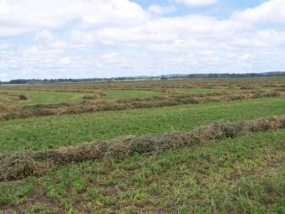 Property in Wheatlands - $750,000
