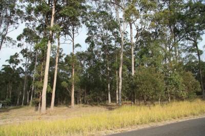 Property in Glenwood - $70,000