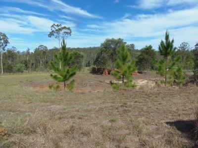 Property in Glenwood - $71,000