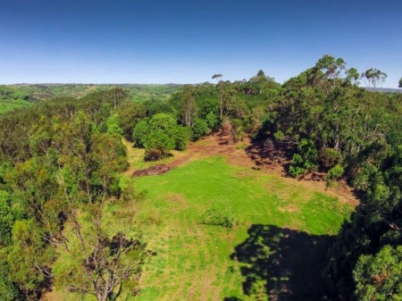 575 Binna Burra Road, Federal, NSW 2480
