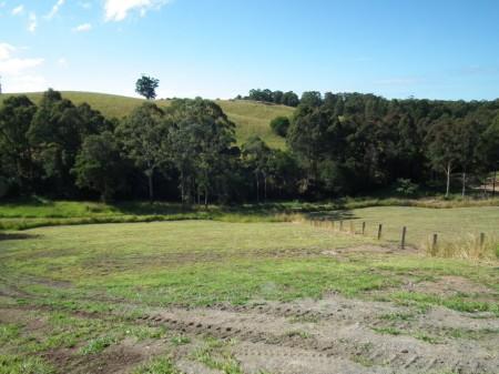 92/12  Creekline Cresent , Tallwoods Village, NSW 2430