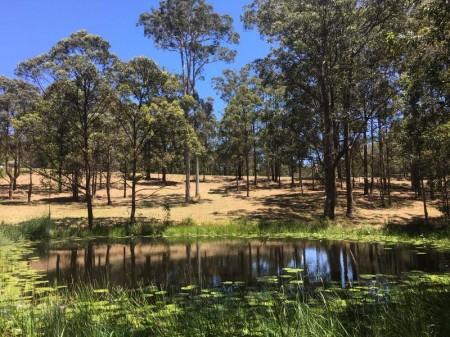 19 Panorama Drive, Diamond Beach, NSW 2430
