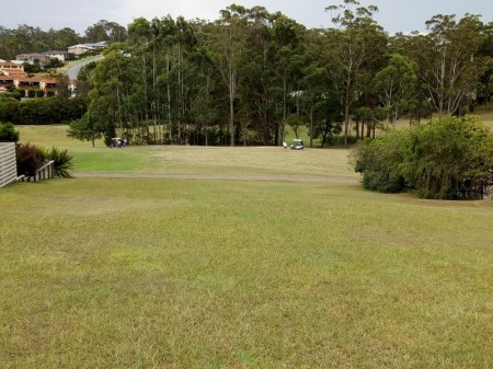 7 Grangewood Avenue, Tallwoods Village, NSW 2430