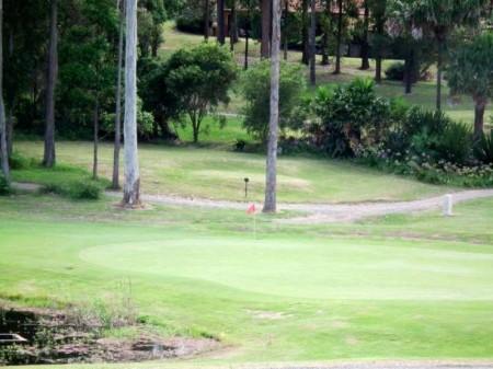 207 Grangewood Avenue, Tallwoods Village, NSW 2430