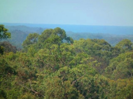 190 Winmurra Drive, Rainbow Flat, NSW 2430