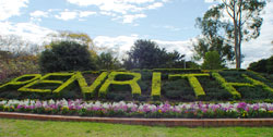 50 Lethbridge St, Penrith, NSW 2750