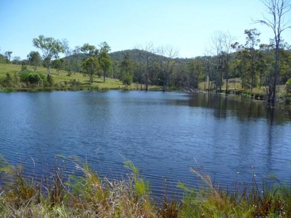 1557 Eumundi Kenilworth, Belli Park, QLD 4562