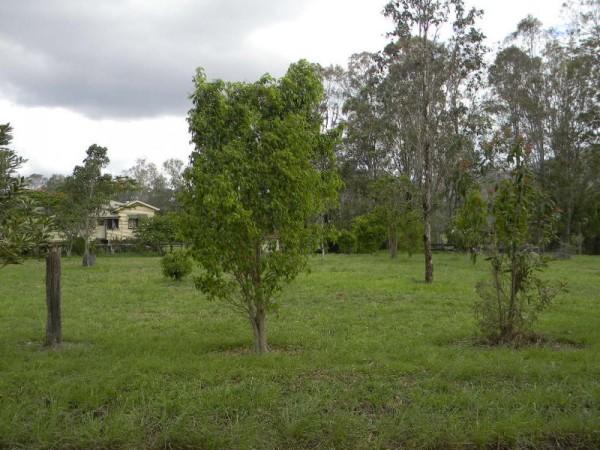 22 Mitchell Creek Road, Kandanga Creek, QLD 4570