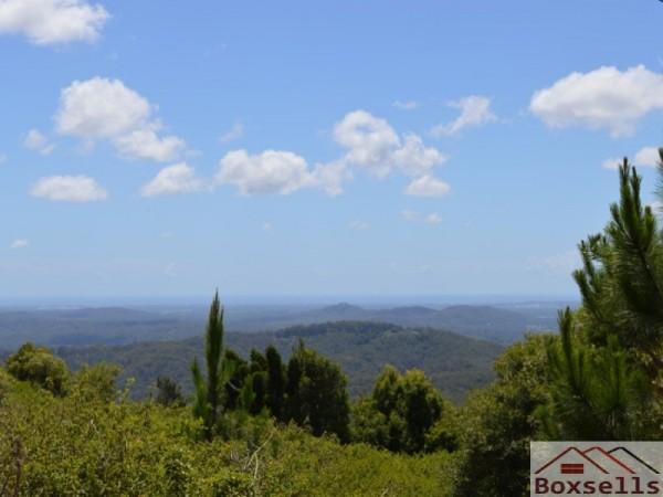 650 Maleny-Montville Road, Balmoral Ridge, QLD 4552