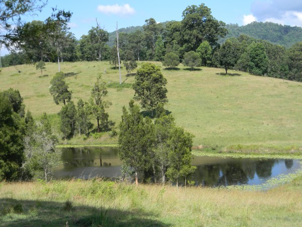 39 Aherns Road, Maleny, QLD 4552