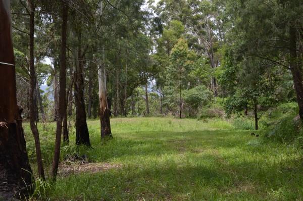 L179 Kilcoy Lane, Conondale, QLD 4552