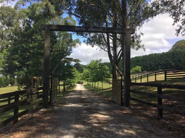 Myra Vale Road, Wildes Meadow, NSW 2577