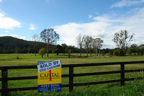 Lot 103 Yarramalong Road, Wyong Creek, NSW 2259