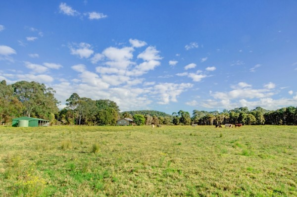 9 Watagan Forest Drive, Jilliby, NSW 2259
