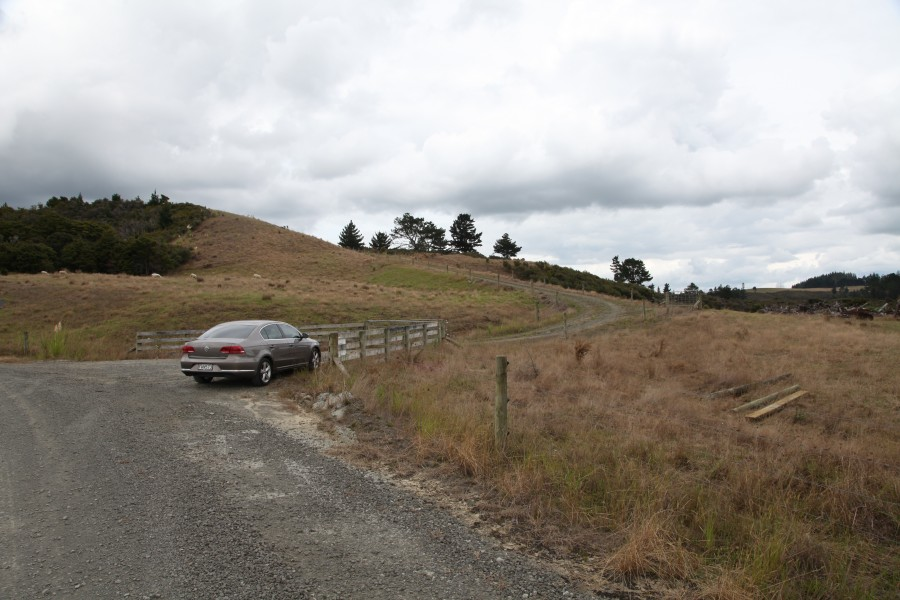 Real Estate in Dargaville Surrounds