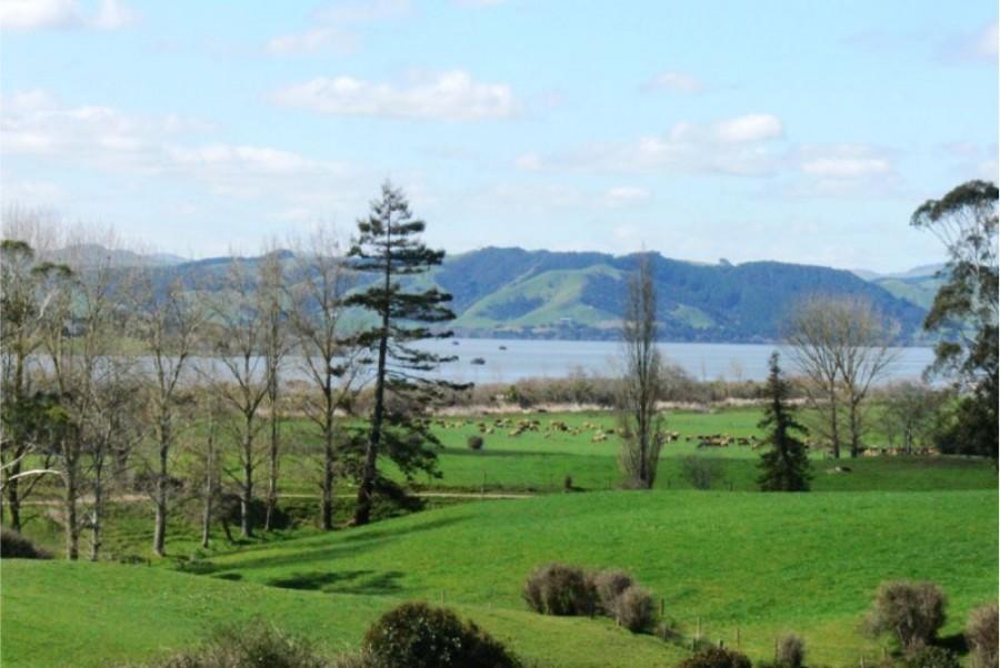Te Kauwhata Properties For Sale