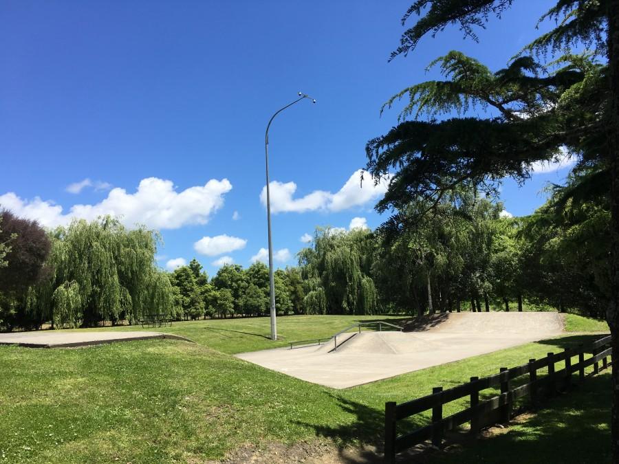 Te Kauwhata Skate Park