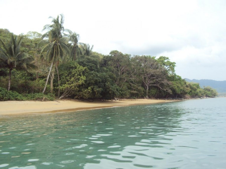 Property For Sale in Palawan